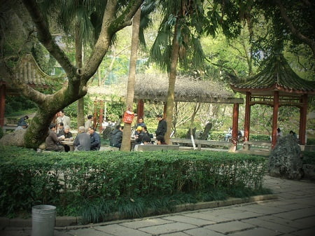 Amanda Sinclair Xi Hu Park
