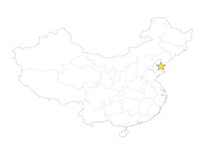 Dalian star