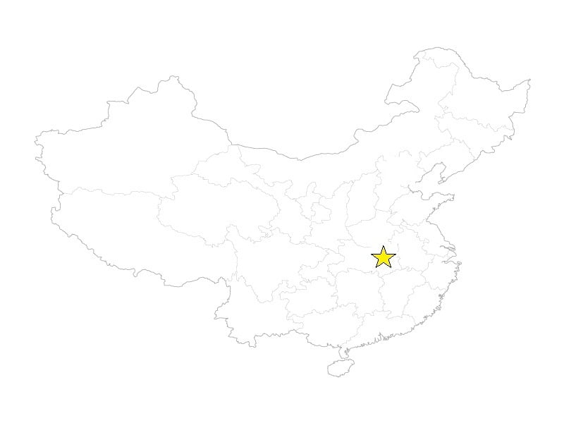 Wuhan star